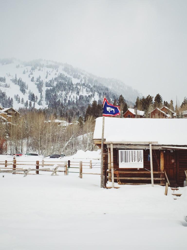 Franco_snowshapes_jackson_hole_WY